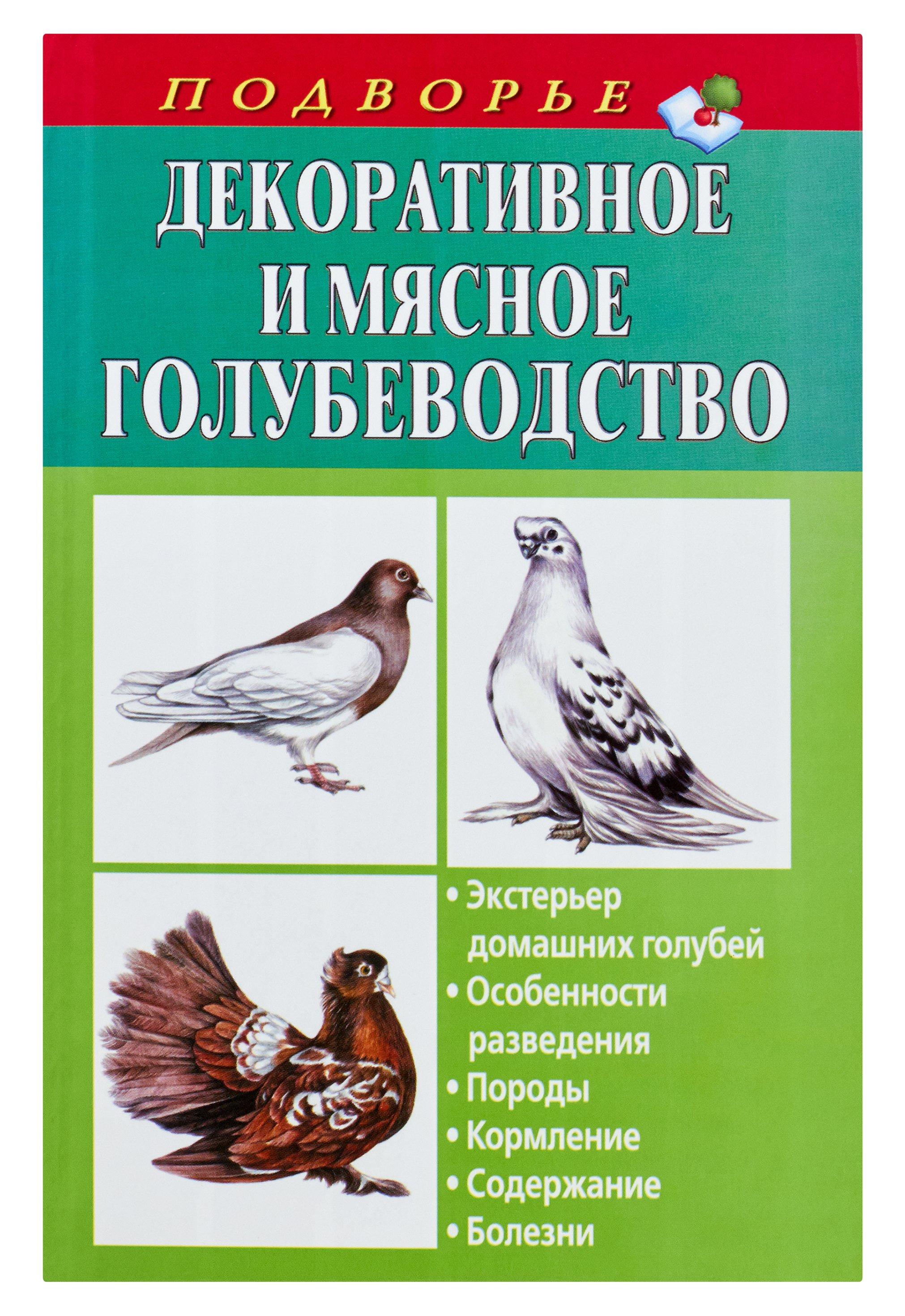 Новая книга /ndc/iblock/519/519bdaa629d92ca07999b6866e6a63e4/53290dc689abd2a3aca9a54c847a68dd.jpg на deti-best.ru