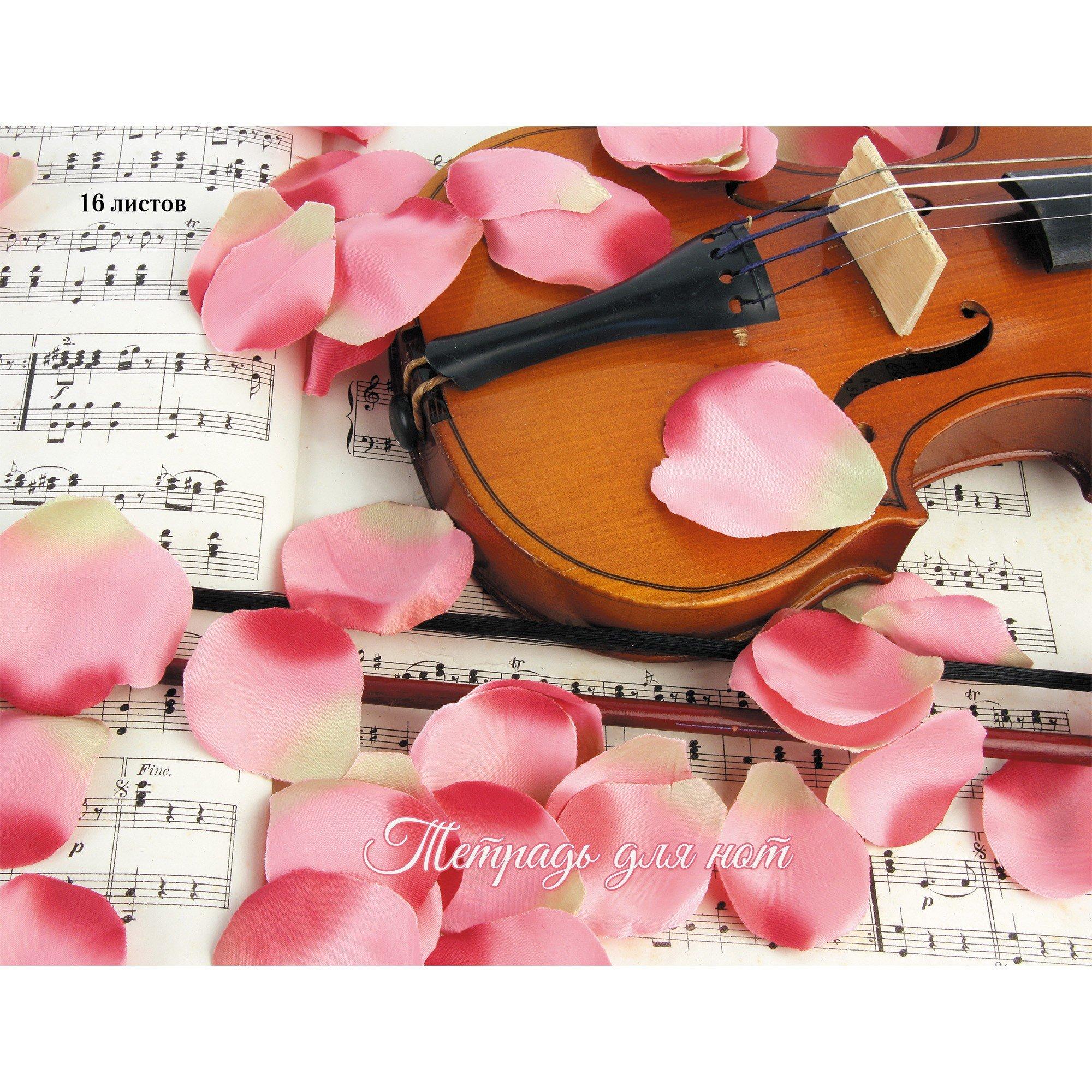 Скрипка в лепестках роз цена 2017