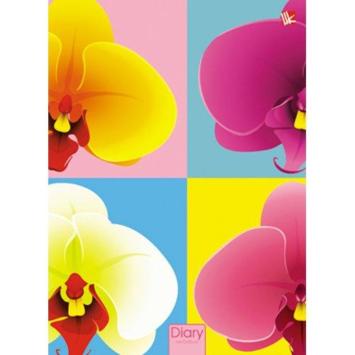 Графика. Орхидеи (поролон) 160л. А5- цена 2017