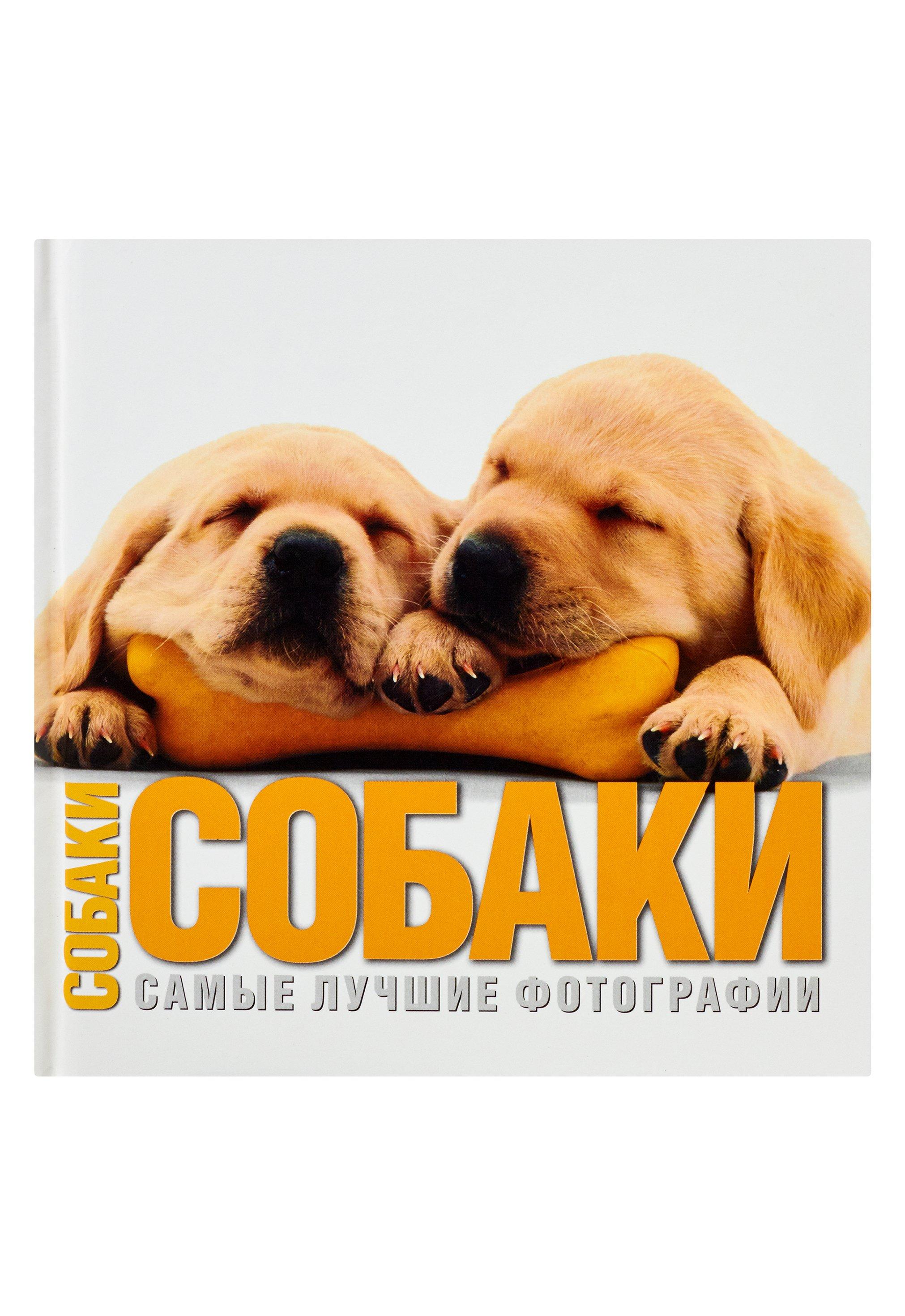 Собаки. Самые лучшие фотографии цена