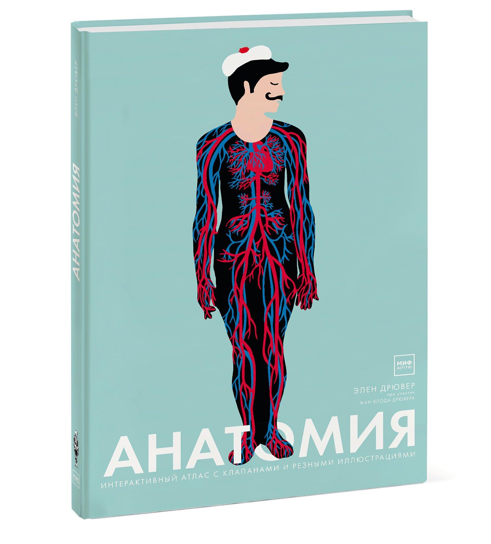 Элен Дрювер Анатомия элен дрювер анатомия 3 е изд