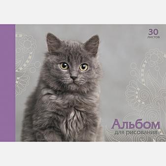 Пушистый котик (А)