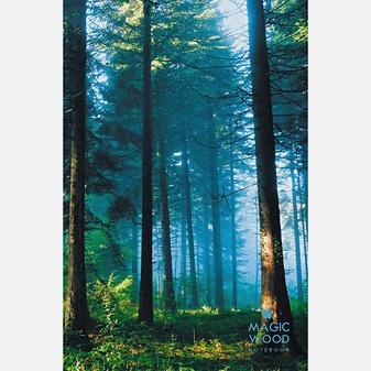 Пейзаж. Утренний лес (А5, 130л.)