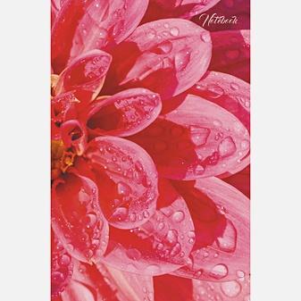 Цветы. Макросъемка (А5, 80л.)