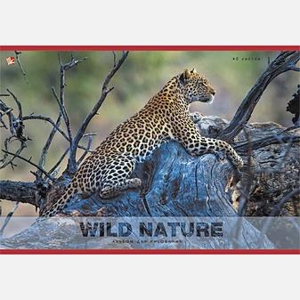 Дикий мир. Леопард