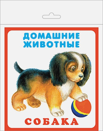 Домашние животные (20 карточек с европодвесом)