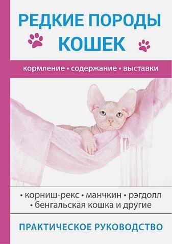 Бочкова С. - Редкие породы кошек обложка книги