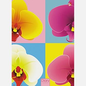 Графика. Орхидеи (поролон) 160л. А5-