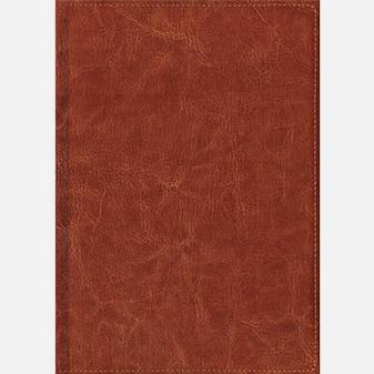 Темно-коричневый (1259) (недатированный А6)