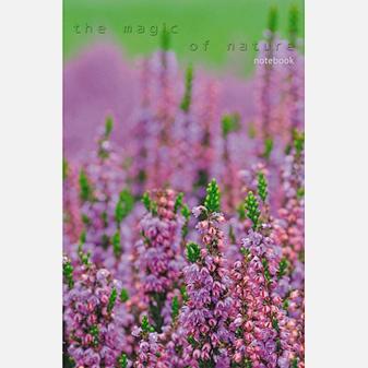 Книга для записей «Пейзаж. Цветущая поляна», А5, 100 листов