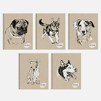 Sketch dog