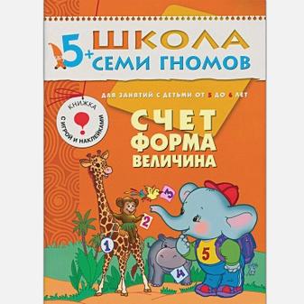 Дарья Денисова - ШСГ Шестой год обучения. Счет, форма, величина. обложка книги