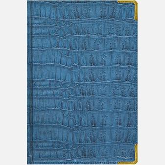 Skin (синий) (ЕКП51415216) (недатированный А5)