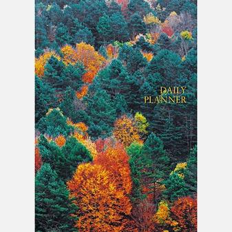 Пейзаж. Панорама леса (А5, 152л.)