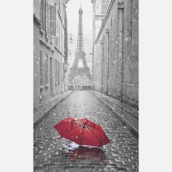 Вокруг света. Парижские улочки