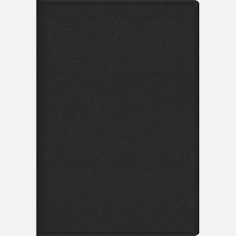 Темно-серый ZODIAC (15615207) (недатированный А6)