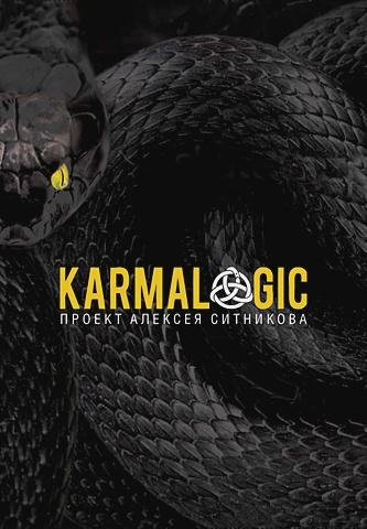 Ситников А.П. - Karmalogic обложка книги
