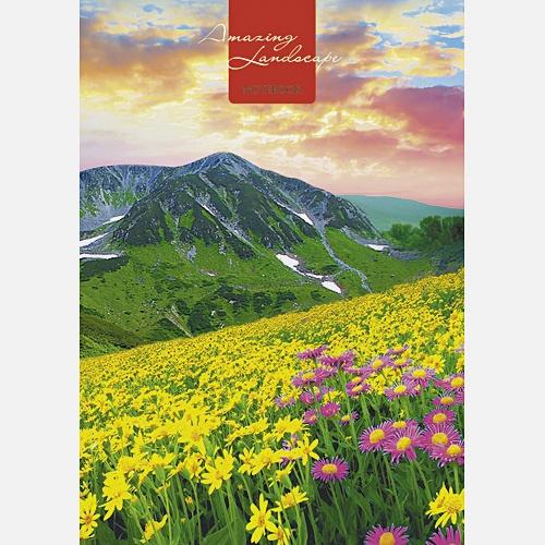 Пейзаж. Цветущая долина