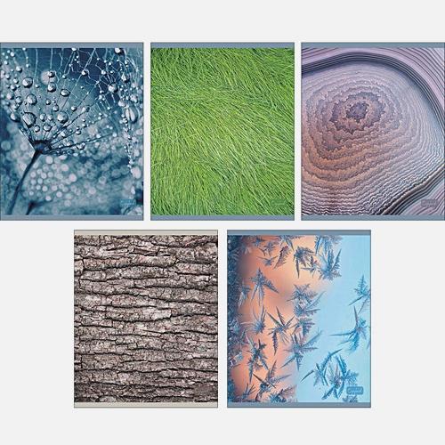 Макросъемка (текстуры)
