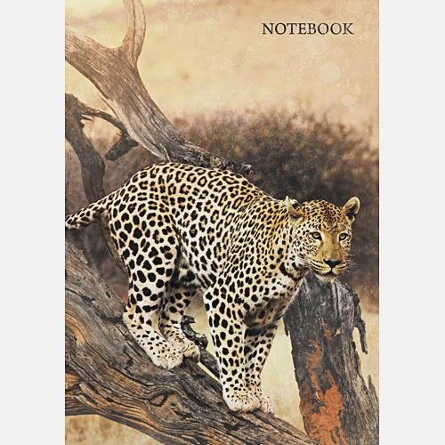 Живая планета. Леопард