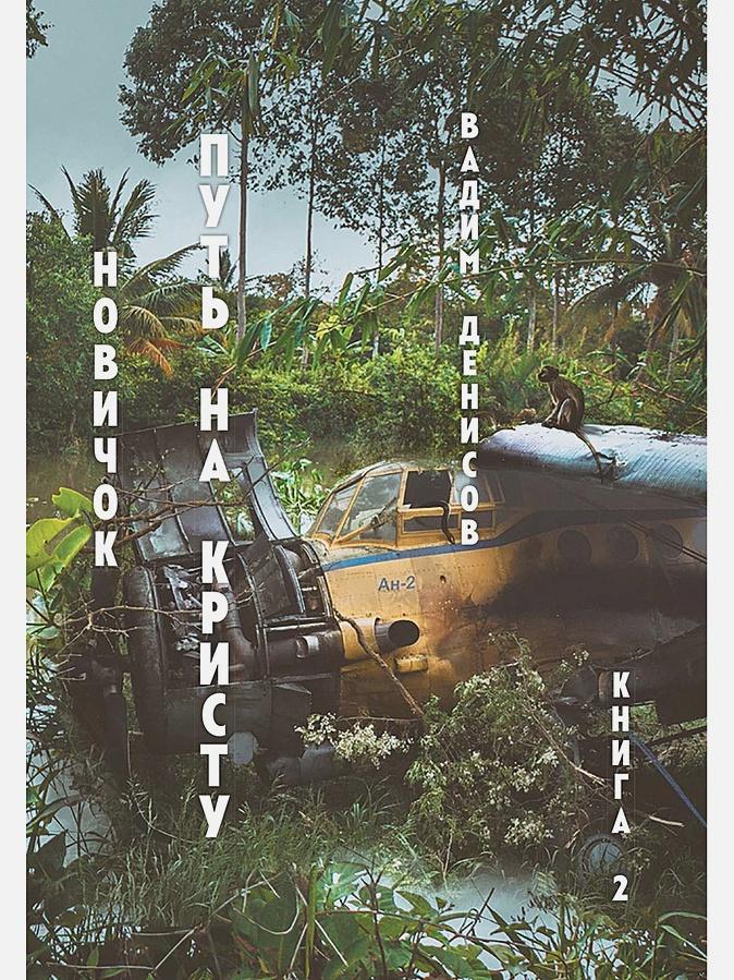 Денисов В.В. - Новичок. Путь на Кристу. Книга 2 обложка книги