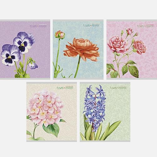 Любимые цветы 96л,.5 видов