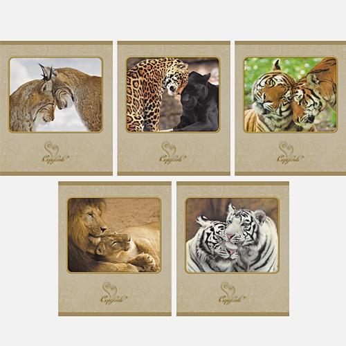 Нежность (дикие кошки) 96л,.5 видов