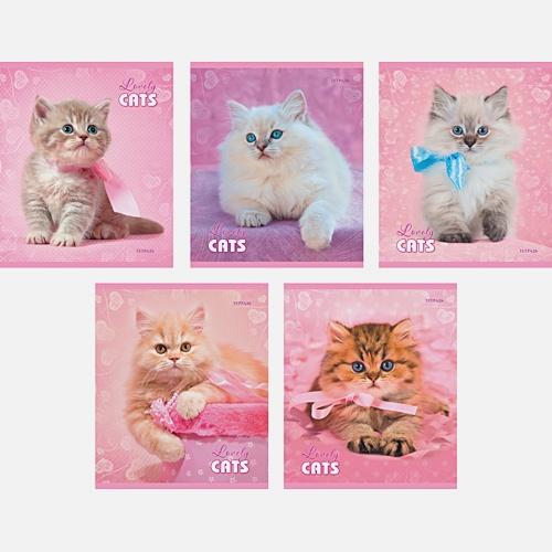 Пушистые кошки 48л., 5 видов