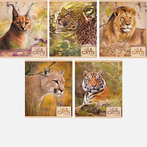 Хищники (Wild cats) 48л., 5 видов