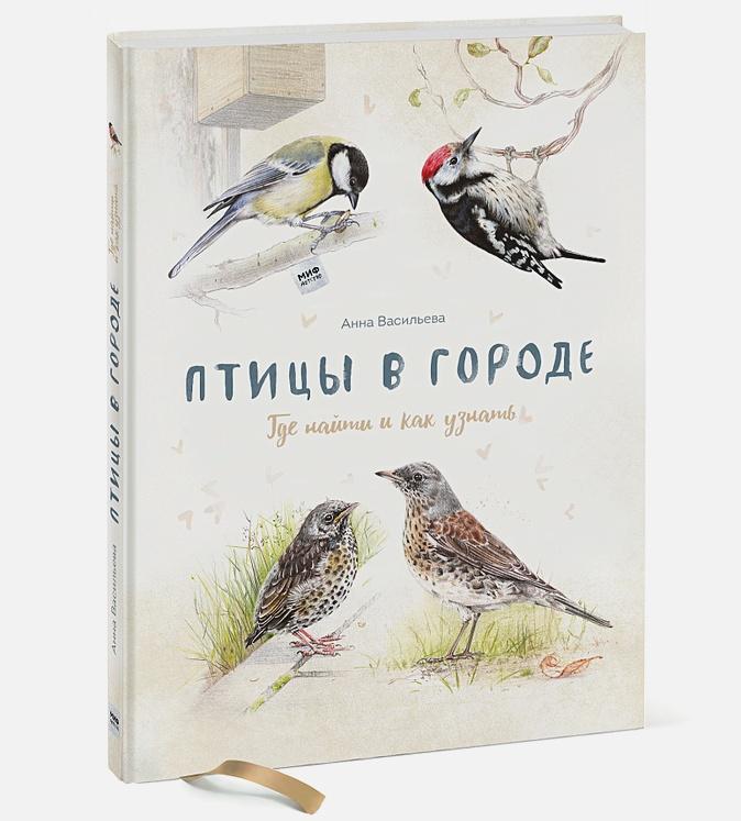 Птицы в городе. Где найти и как узнать Анна Васильева