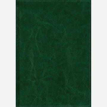 Зеленый (51419209) (полудатированный А5)