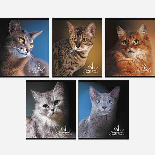 Кошачьи портреты 96л.,5 видов