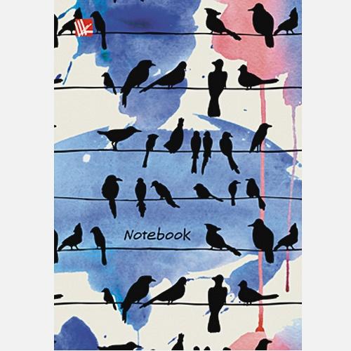 Графика Городские птицы 96л.
