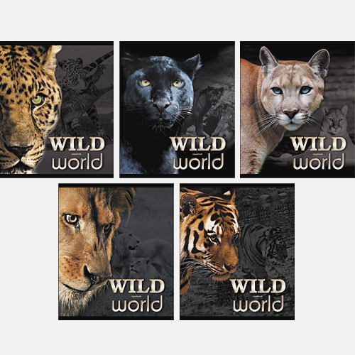 Дикие кошки (Wild world) 48л., 5 видов