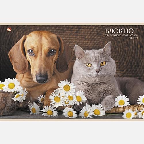 Лучшие друзья (кот и пес)