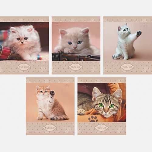 Пушистые котята (Fluffy Cat) 40л.,5 видов