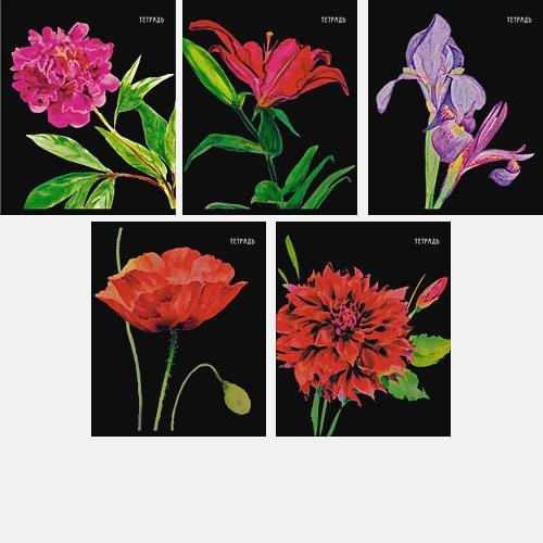 Золотые цветы 48л,.5 видов