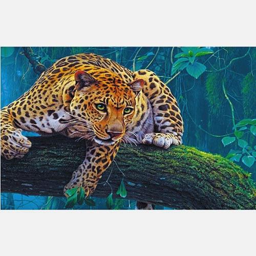 В мире животных. Леопард на дереве