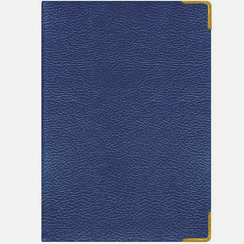 Stardream (синий металлик) (ЕКП51415205) (недатированный А5)