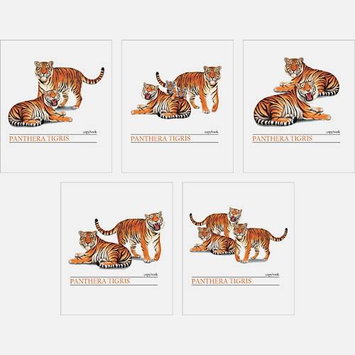 Могучие тигры 48л., 5 видов