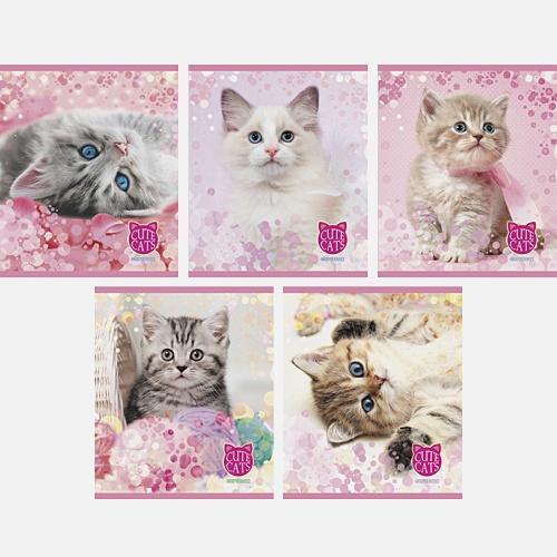 Милые котята 48л., 5 видов