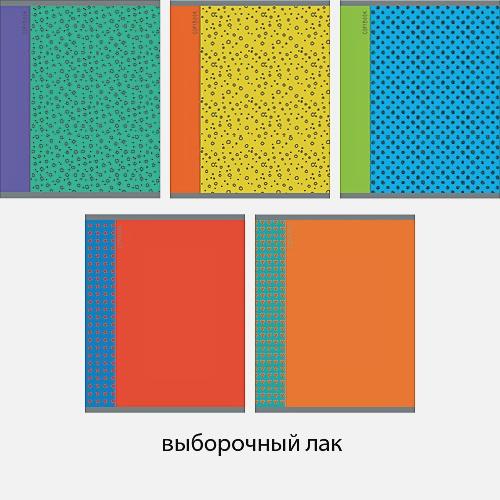 Яркие переплеты 48л., 5 видов