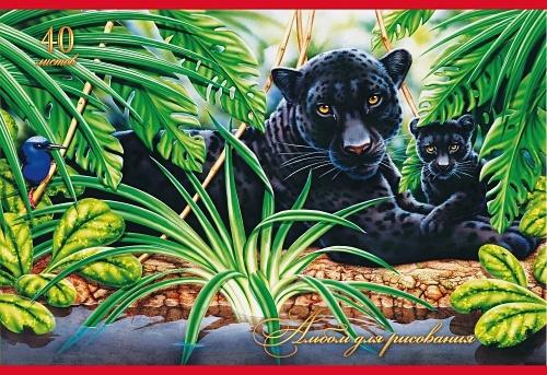 Дикая природа. Пантеры
