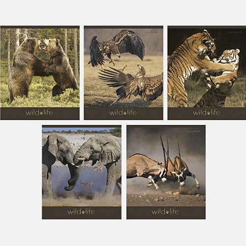 Дикий мир (животные) 48 л., 5 видов