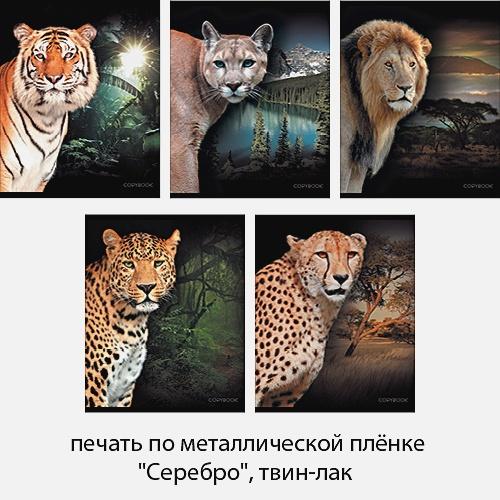 Хищные кошки (среда обитания) 48л., 5 видов