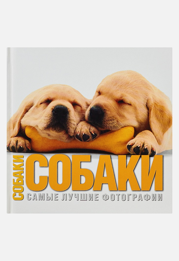 Буоно В. - Собаки. Самые лучшие фотографии обложка книги
