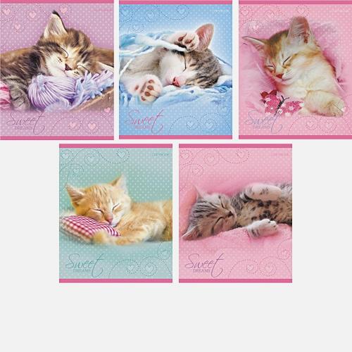 Очаровательные котята 40л.,5 видов