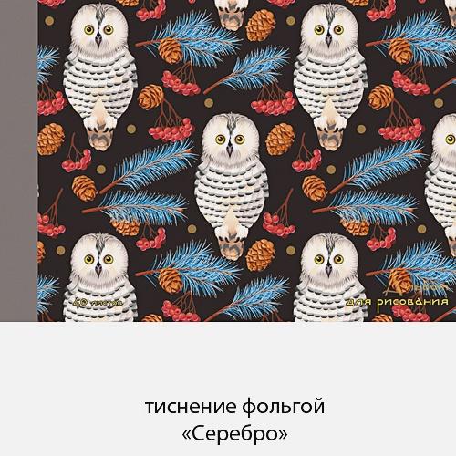 Полярные совы (графика) (склейка, 40л.)