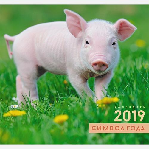Символ года. Свинка на траве