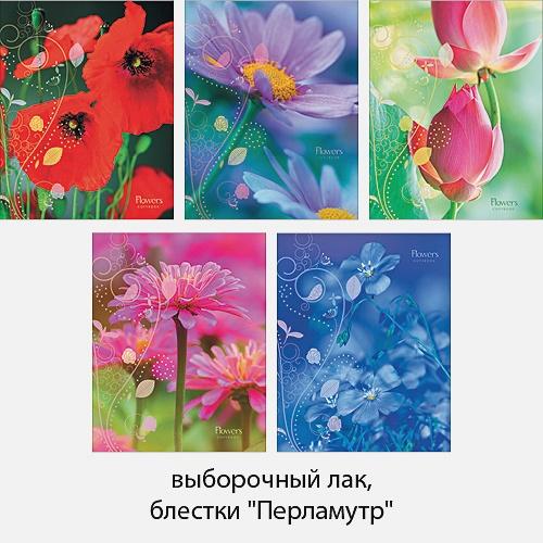 Ароматы лета (цветы) 48л., 5 видов